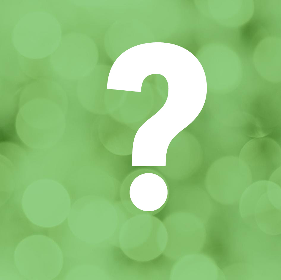 Bin ich grün? Unser Wahl-O-mat.