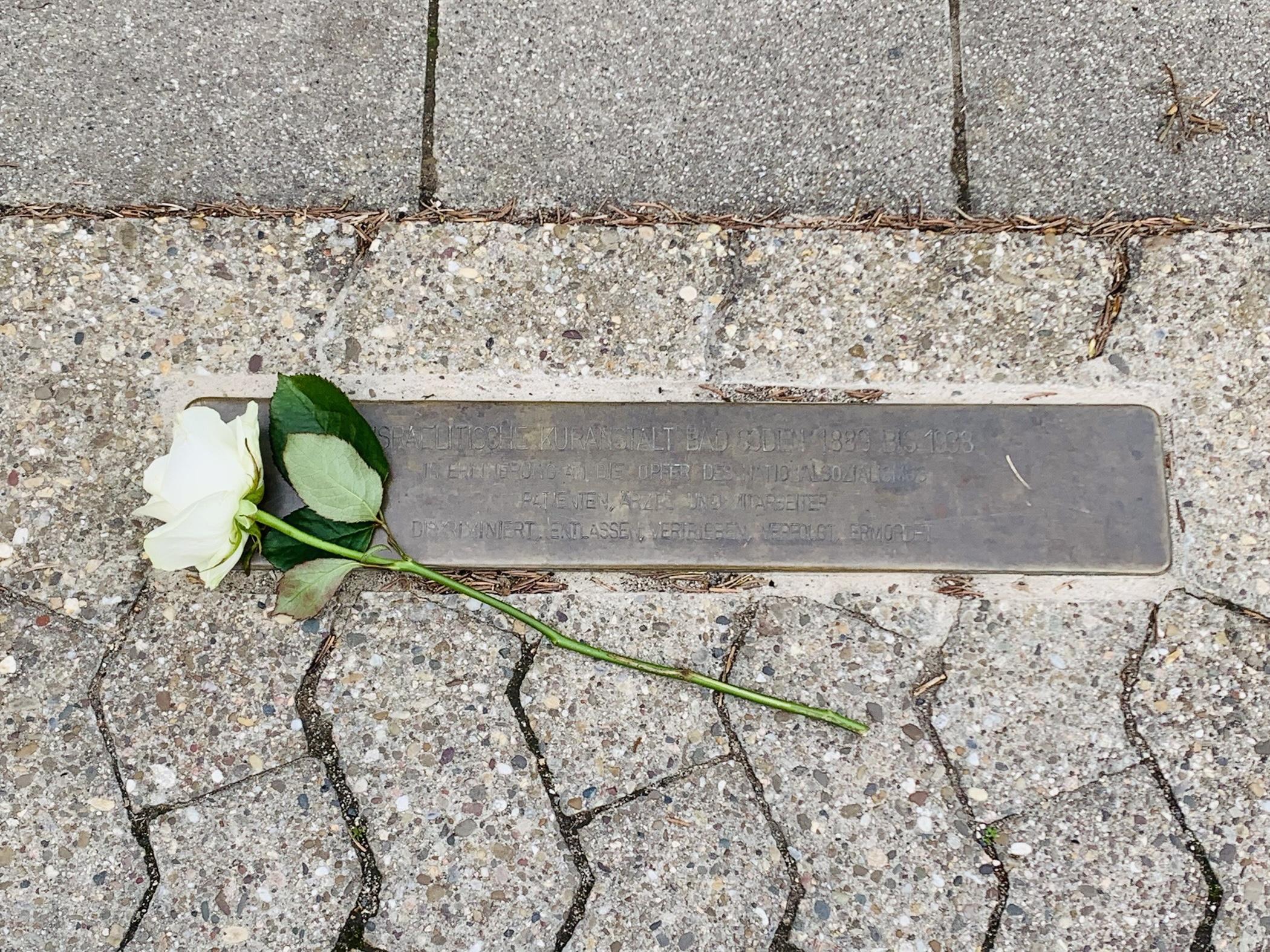 Drei weiße Rosen – Bad Sodens Grüne gedenken der Opfer der NS Herrschaft